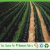 China-Landwirtschaft Spunbond pp. nichtgewebtes Landschaftsgewebe
