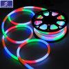 luz de néon flexível de 110V 220V SMD 5050