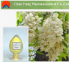 Extrait de bourgeon floral de Japonica de Sophora/rutine normaux 95%