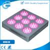 nova Series T9 do diodo emissor de luz Flowering Grow Light de 3W Chip