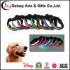 Melhor novo que vende o colar de cão de piscamento do diodo emissor de luz do colar de nylon Multi-Color do animal de estimação