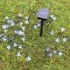 Luzes solares da flor 20LEDs das lâmpadas 4.8m para o Natal ao ar livre do jardim