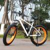 bici grassa della montagna E della gomma del motore 8fun