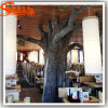 مطعم زخرفة تمويه معمل شجرة اصطناعيّة جافّ
