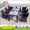 反紫外線庭の藤のダイニングテーブルの椅子(DH-6079)