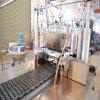 Ligne de Productiong de sucrerie de la sucrerie Machine/QQ de gélatine