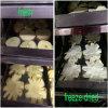 Venda quente! Máquina automática comercial do secador de gelo do vácuo do alimento