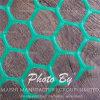 Rete metallica di plastica del diamante dell'HDPE (fabbrica