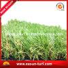 Figura  di D  che modific il terrenoare l'erba artificiale del tappeto erboso