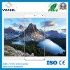 Самое лучшее цена! Протектор прозрачных/цвета 3D Curvered Tempered стекла экрана для iPhone6/6s плюс протектор экрана