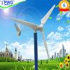 Home Use를 위한 3kw Wind Turbine Generator