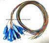 Connecteur d'intérieur de fibre optique de Sc de 12 faisceaux de FTTH