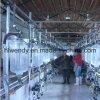 Het Systeem van de Woonkamer van de Melk van de visgraat voor de Landbouwbedrijven van de Melkkoe