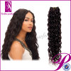 5A Top Quality 100%年のCurly WeftブラジルのHair (GP-BR-CL)