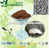 Phellinus Linteusのエキスの粉の多糖類10-70%