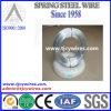 El alambre de acero galvanizado sumergido caliente de la alta tensión del estruendo GB JIS de AISI ASTM BS/galvanizó el alambre/el filamento de alambre de acero galvanizado