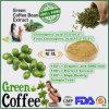 100% naturale e Highquality Green Coffee Bean Extract Chlorogenic Acid 10% 50%