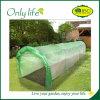 Onlylife PE Eco-Friendly 정원은 갱도 온실을 증가한다