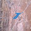 Barrières et frontières de sécurité de Sns Rockfall pour la montagne protectrice