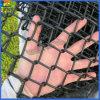 よい製造者9のゲージPVC上塗を施してあるチェーン・リンクの金網