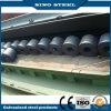최신 구르는 최신 Selling ASTM A36 Hr Steel Coils 또는 Plate