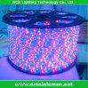 R/G/B/Y/W/RGB Option (3528/60-A)를 가진 LED RGB Strip Light