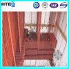 Wärmeaustauscher-Dampfkessel-Part- Überhitzer