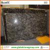 Granite naturel Slab pour Wall Tile/Hotel Vanity/Backplash