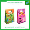 Sac fait sur commande de cadeau de carton d'impression de couleur de promotion