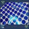 Zelfklevende Etiketten van het Hologram van de Veiligheid van de Kleur van de douane de Blauwe Holografische