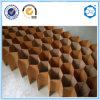 Âme en nid d'abeilles de papier de Suzhou Beecore pour le fabricant de meubles