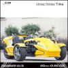 300cc Ztr Trike para el coche adulto de la rueda del automóvil descubierto 3 del triciclo 24HP Trike para la venta