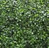 容易にアセンブルされた防水庭の人工的な葉の塀(MW16031)