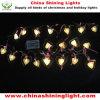 luces de la decoración LED del banquete de boda del día de fiesta de la Navidad de 20LED los 2m