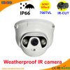 50m LED Array 소니 700tvl Dome CCTV Camera Security Systems