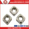 Noci quadrate Finished di lucidatura dell'acciaio inossidabile, DIN557