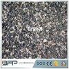 Adoquín gris y negro de piedra de pavimentación y que cultiva un huerto de la grava