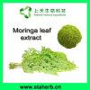 Polvere organica naturale organica del foglio della polvere/100% Moringa del foglio della Moringa di vendita diretta della fabbrica