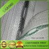 Anti rete di plastica di protezione della grandine della rete della grandine