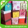 De primeira qualidade e Cretive Lovely Paper Gift Box (SLF-PB023)
