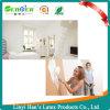 Peinture acrylique extérieure et intérieure de texture pour des murs