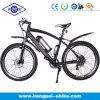 Alloy en aluminium Electric Bicycle Bike avec En15194 (HP-E009)