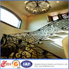 Residential lussuoso Safety Wrought Iron Railings (dhrailings-25)