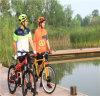 2つの車輪の電気自転車、2つの車輪の電気永続的な自転車