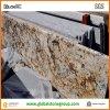Opgepoetste Countertops van het Graniet Persa van Brazilië Gouden
