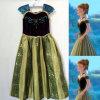 Falda congelada alineada de la alineada de princesa Dress Girls Dress Costume de Ana de los niños de la alineada de Ana