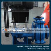 Bomba resistente horizontal do processamento mineral