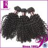 Волосы Remy Kinky девственницы скручиваемости перуанские (GP-PR-KCL)