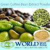 Estratto acido clorogenico puro del chicco di caffè di verde dell'arabica del peso del campione libero della fabbrica di GMP della medicina di verde dell'estratto basso del caffè
