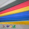 Panneau ondulé de feuille de matière plastique